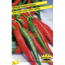 SEEDS OF CHILLI PEPPER CAYENNE