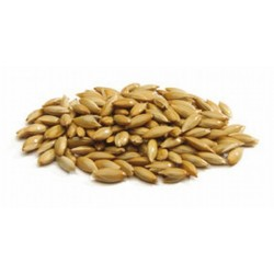 CANARY GRASS SEED FOR BIRDS...