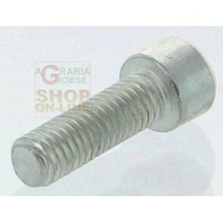 SCREW SDRAMATORE JET-SKY GZ325