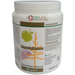 GOBBI BAUMBALSAMO MASTIC TO THE WOUNDS OF THE SHRUBS AND TREES AND PASTE GRAFTS HEALING KG. 1