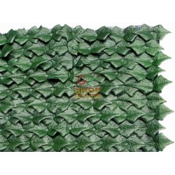 ARELLE HEDGE EVERGREEN IVY MT. 1,5X3