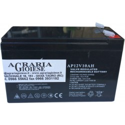 BATTERY FOR PUMP HURRICANE STOCKER TO the LEAD-free RECHARGEABLE SEALED 12 VOLT 10Ah