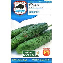 BISON SEEDS OF CUCUMBER CORINTH F1 HYBRID